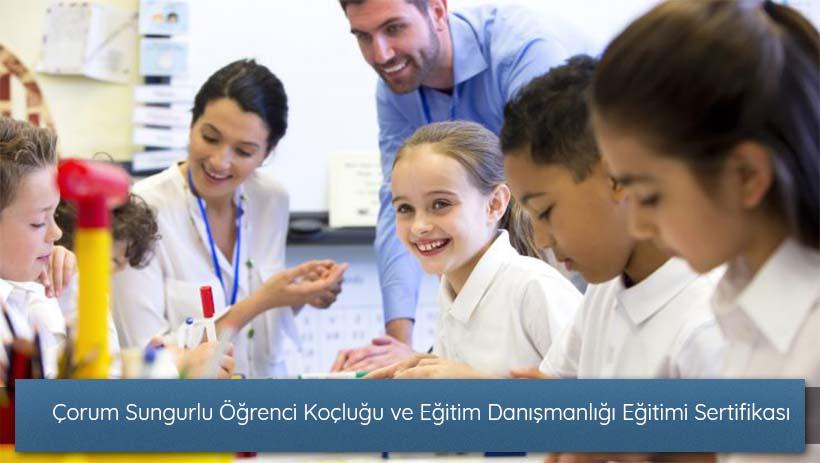 Çorum Sungurlu Öğrenci Koçluğu ve Eğitim Danışmanlığı Eğitimi Sertifikası